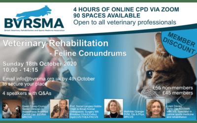 Veterinary Rehabilitation: Feline Conundrums CPD